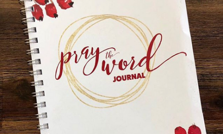 [MOB LIVE!] EPISODE #45: Bonus Content for the Pray the Word Journal
